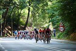 Ellen van Dijk (NED) at Boels Ladies Tour 2019 - Stage 4, a 135.6 km road race from Arnhem to Nijmegen, Netherlands on September 7, 2019. Photo by Sean Robinson/velofocus.com