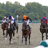 Lingfield 28th July