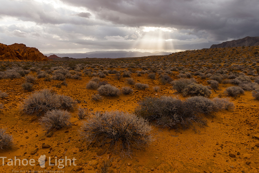 Sun beams poke through the sky over the sagebrush, another part of the unique landscape of Valley of Fire state park in Southern Nevada about 2 hours outside of Las Vegas.