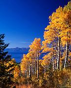 Lake Tahoe Landscape Fall Colors