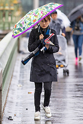 © Licensed to London News Pictures. 30/04/2018. London, UK. A woman braves the rain beneath umbrellas on Westminster Bridge as wet weather hits the United Kingdom. Photo credit: Rob Pinney/LNP