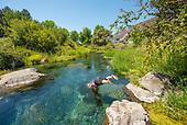 Niagra Springs