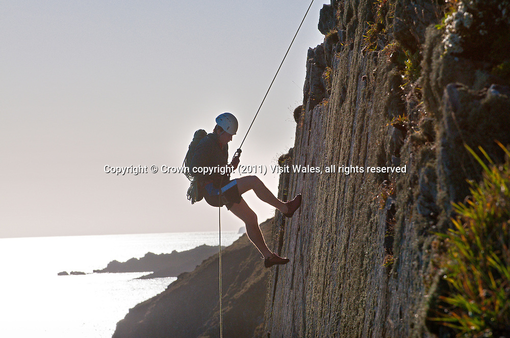 Climber abseiling down Carreg y Barcud<br /> Rock climbing<br /> Near St David's<br /> Pembrokeshire<br /> South<br /> Activities and Sports