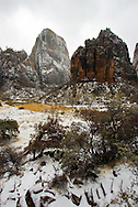 Dramatic cliffs rise above a snowy riverbed with foreground trees, Zion National Park
