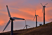 Altamont Pass Wind Farm is one of the oldest and largest wind turbine facilities in America and the world.  Having gotten its start as a result of the policy incentives from the 1970's era energy crisis, this farm is now in a second phase, having been through the process of &quot;repowering&quot; from old, smaller, more avian-destructive turbines, to larger, slower-turning, more powerful, and less avian-destructive turbines.  Some of the Altamont Pass Wind Farm's energy output is contracted through a power purchase agreement (PPA) with Google to power their Googleplex in Mountain View.<br />