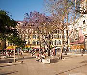 People enjoying a sunny spring afternoon in Plaza de la Merced, Malaga Spain