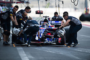 October 27-29, 2017: Mexican Grand Prix. Brendon Hartley (NZ), Scuderia Toro Rosso, STR12