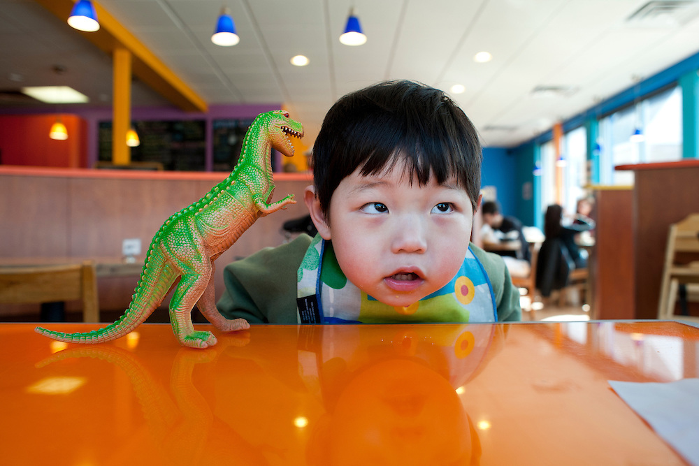 Holden Hyeon Bhin Miller plays with a toy dinosaur at Cafe Zuzu in Madison, Wis., on March 21, 2009. Holden is 21-months old.
