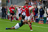 South Africa v Wales 180613