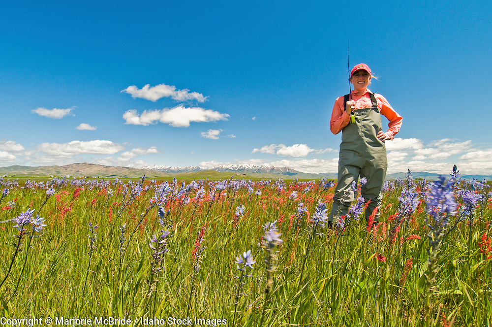 Woman fly fishing during spring walking through a field of wildflowers near Silver Creek and Fairfield, Idaho.