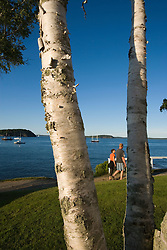 Frenchman Bay as seen from the Shore Path in Bar Harbor Maine USA