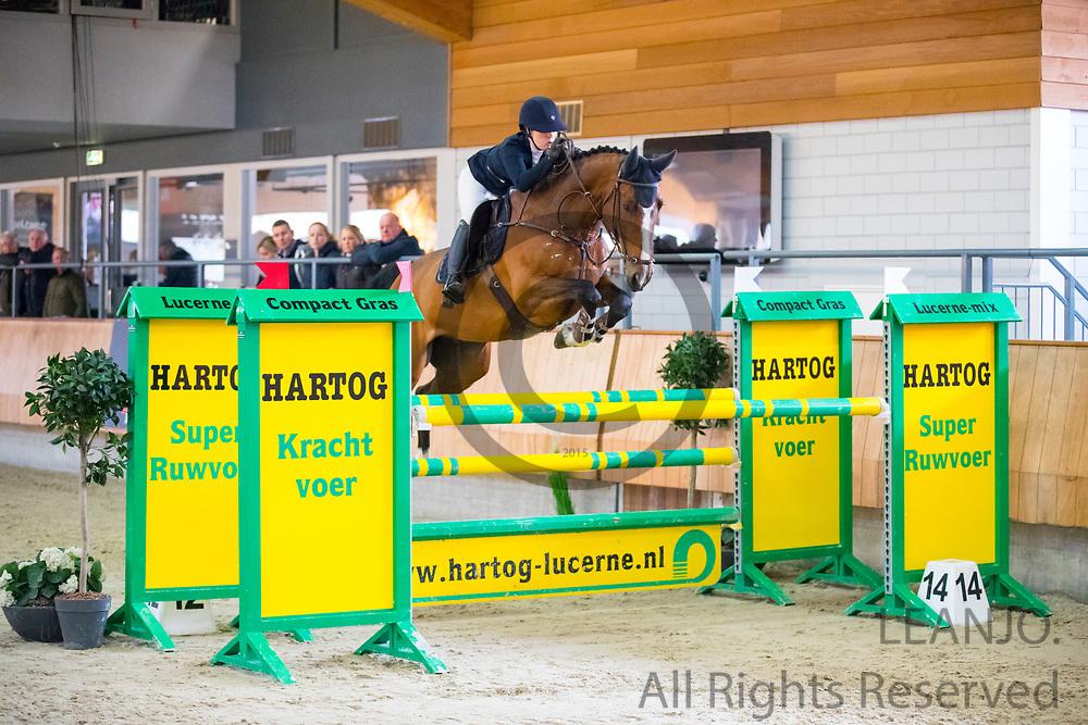 Katinka van Nieuwenhuyzen - Gigolo<br /> KNHS Indoorkampioenschappen 2018<br /> © DigiShots