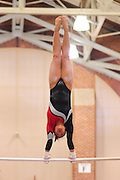 January 17, 2010; Stanford, CA, USA; Stanford Cardinal gymnast Catherine Nguyen performs on the bars during the meet against the Arizona Wildcats at Burnham Pavilion. The Cardinal defeated the Wildcats 196.025-194.675. Mandatory Credit: Kyle Terada-Terada Photo