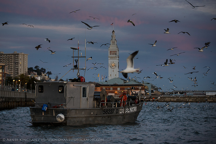 Dominic Papetti and Karen Locaynia fish for herring near the Embarcadero in San Francisco