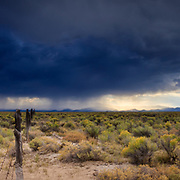 An approaching thunderstorm darkens the desert sky near Great Sand Dunes National Park, Alamosa, Colorado.