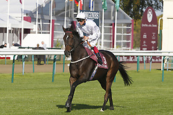 September 30, 2017 - Chantilly, France, France - Course 6 - First Sitting - Lanfranco Dettori (Credit Image: © Panoramic via ZUMA Press)
