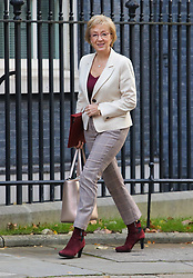 © Licensed to London News Pictures. 22/10/2019. London, Andrea Leadsom, Secretary of State for Business arrives at 10 Downing Street for a Cabinet meeting … As Boris Johnson tries to get his Brexit Bill  through Parliament. Photo credit: Alex Lentati/LNP