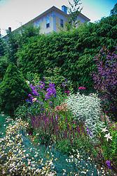 Garden at the Castine Inn, Castine, Maine, US