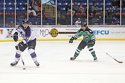 15 November 2013: Paul D'Agostino & Bret Peppler. Louisiana IceGators at Bloomington Thunder Southern Professional Hockey League (SPHL) at the U.S. Cellular Coliseum in Bloomington Illinois