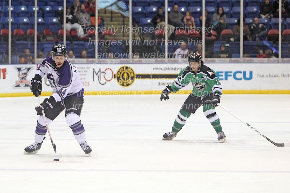 15 November 2013: Paul D'Agostino & Bret Peppler. Louisiana IceGators at Bloomington Thunder Southern Professional Hockey League (SPHL) at the U.S. Cellular Coliseum in Bloomington Illinois