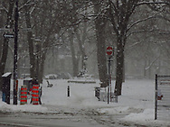 Carré St-Louis, Montreal, quiet snowfall