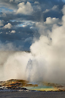 Clepsydra Geyser along the Fountain Paint Pot Trail Yellowstone National Park