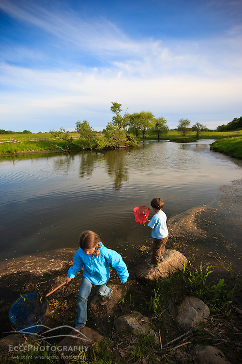 Two children search for frogs in a pond on a farm in Ipswich, Massachusetts.