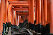 "At Fushimi Inari Taisha, a big Shinto shrine, thousands of vermilion Torii gates straddle trails, in Kyoto, Japan. Bright vermilion Senbon Torii (""thousands of torii gates"") straddle a network of trails behind its main buildings. The trails lead into the wooded forest of the sacred Mount Inari (233 meters). Fushimi Inari is the most important of several thousands of shrines dedicated to Inari, the Shinto god of rice. Foxes are thought to be Inari's messengers, honored in many statues. The shrine predates the capital's move to Kyoto in 794. The torii gates are donated by individuals and companies, as inscribed on the back of each gate. Prices for small to large gates run from 400,000 to over one million yen."