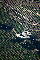 Nov 05, 2003; Los Angeles, CA, USA; Aerial photograph a farm with acres of groves around it spared by the recent fires.   Mandatory Credit: Photo by Shelly Castellano/ZUMA Press. (©) Copyright 2003 by Shelly Castellano