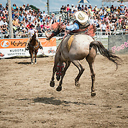 Valleyfield Rodeo 2012
