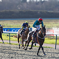 Lingfield 28th December