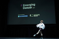Emerging Dancer 2013