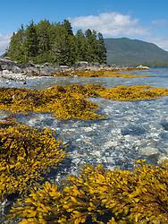 Broken Islands in Barclay Sound.  British Colombia, Canada.
