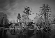 Maidenhead. United Kingdom.  Infra Red Filter used to create simulated infra red<br />  Digital Image file/negatives, Ray Mill Island, Maidenhead, general views, GV<br /> <br /> Thursday  17/04/2014  <br /> <br /> © Peter SPURRIER<br /> <br /> NIKON CORPORATION  NIKON D4  f14  30sec  135mm  2.3MB