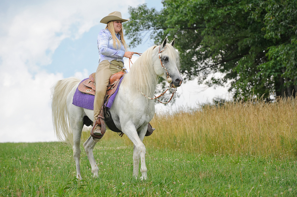 Woman horseback riding on beautiful white horse outdoors in nature and sunshine, a cowgirl in American western style clothing on an Arabian stallion.