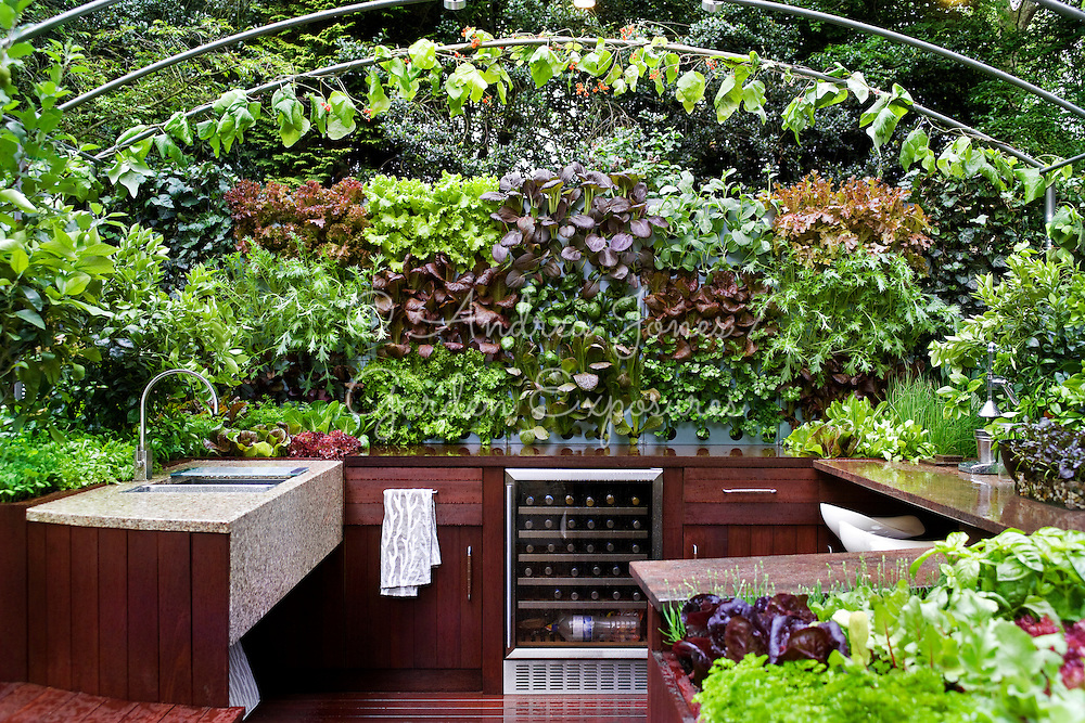 Freshly Prepped by Aralia. RHS Chelsea Flower Show 2009. Silver Flora Medal.<br /> Garden design by Patricia Fox. <br /> Outdoor entertaining kitchen with edible wall.<br /> Marbles worksurfaces, wooden cabinets, seating &amp; deck, stainless steel pergola.<br /> Planting includes Baby leaf Bulls Blood, Baby leaf red kos lettuce, Baby leaf Romano Rosso lettuce, Biona Ricciolina, Endive romanesco, Lettuce Nymans, Lollo rosso, Mizuna, Pak Choi Red Lady, Red Veined Sorrel, Spinach Fiorano F1 &amp; Valeriana d'Olanda<br /> Side bed with Lemon 'Four Seasons'.