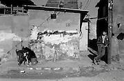 Jabalya Refugee Camp, Gaza 1988. Youth leaning against graffiti covered wall as goats feed on garbage.