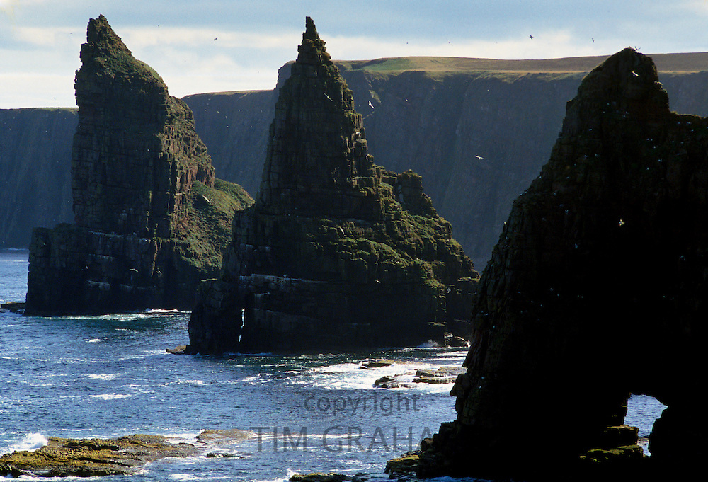 Duncansby Head eroded sea stacks rock pinnacles in the North Sea in Caithness area of Highland region of Scotland, UK