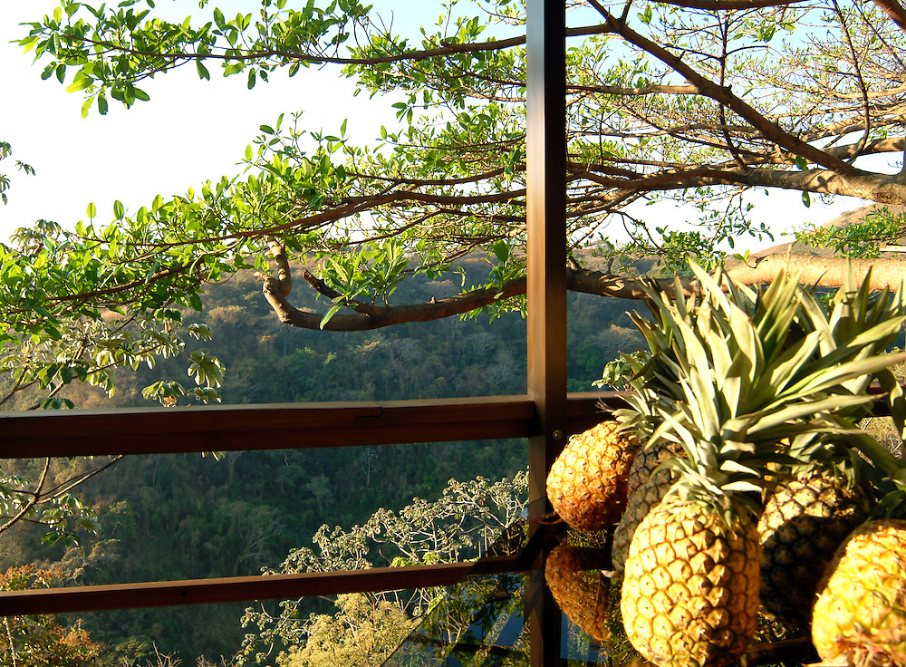 Pineapples on balcony at hotel restaurant in San Jose, Costa Rica