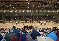 Overzicht<br /> KWPN Hengstenkeuring 2006<br /> Photo © Hippo Foto