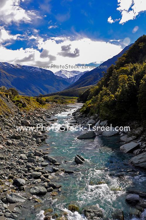 Rob Roy Glacier trek, South Island, New Zealand