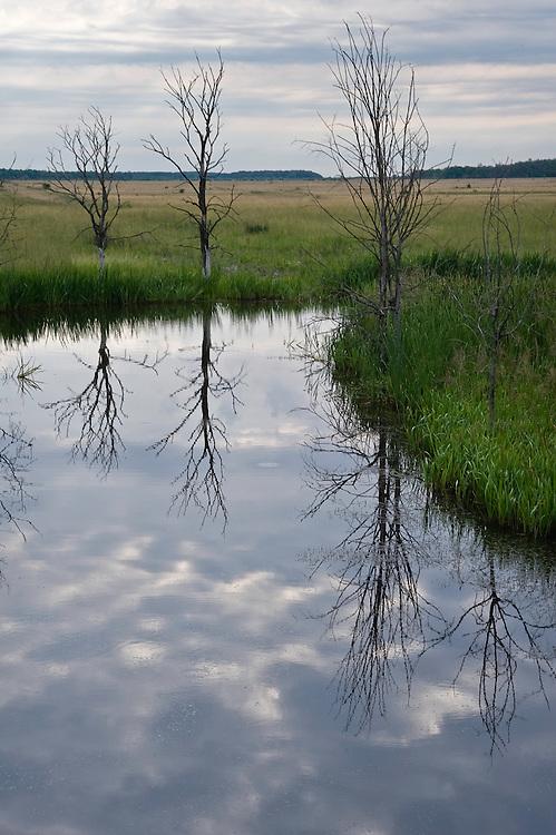 Typical Hortobagy landscape with saline lake on Hortobagy National Park, Hungary