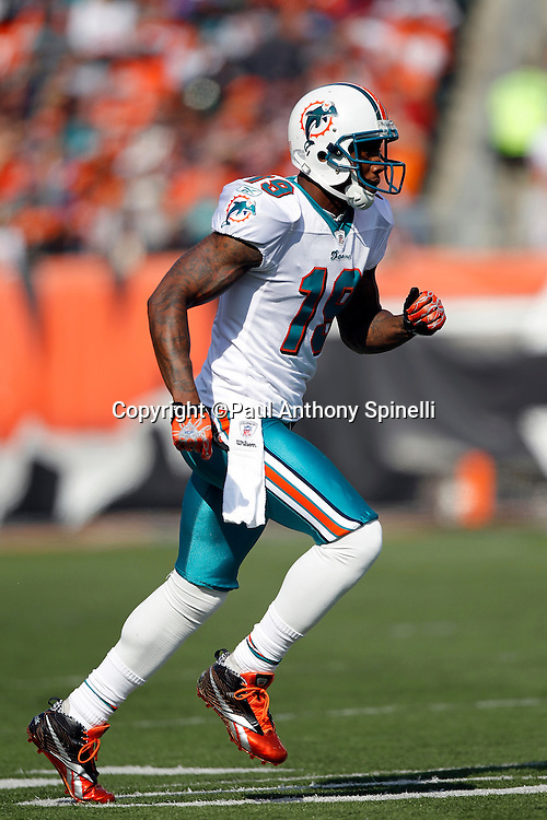Miami Dolphins wide receiver Brandon Marshall (19) goes out for a pass during the NFL week 8 football game against the Cincinnati Bengals on Sunday, October 31, 2010 in Cincinnati, Ohio. The Dolphins won the game 22-14. (©Paul Anthony Spinelli)