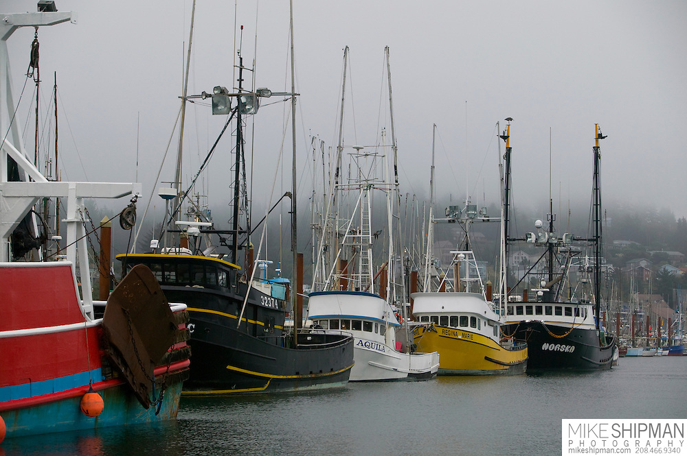 Fishing boats in the fog, Yaquina Harbor, Oregon