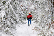 A winter hike in the snow at Pigeon Creek, Baxter County, Arkansas.