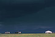 Ger & horses<br /> Darkhadyn Depression<br /> Northern Mongolia