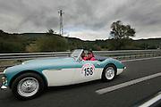 GP TAZIO NUVOLARI 2012. AUSTIN HEALEY 100/6 BN4 1957
