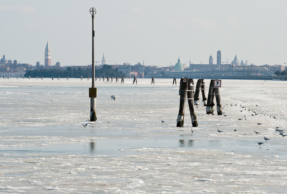 VENICE, ITALY - FEBRUARY 05:  A general view of the North side of the frozen Venice with Saint Mark's belfry on February 5, 2012 in Venice, Italy. Italy as most of Europe is under a spell of very cold weather, it is more than 20 years aince the Venice Lagoon last froze.  (Photo by Marco Secchi/Getty Images)