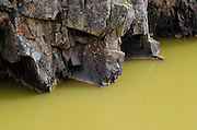 The river water, now turned a mustard yellow, sits in stark contrast to the granite shores, replacing the once aqua blue waters common to this section of the river near Baker's Bridge.