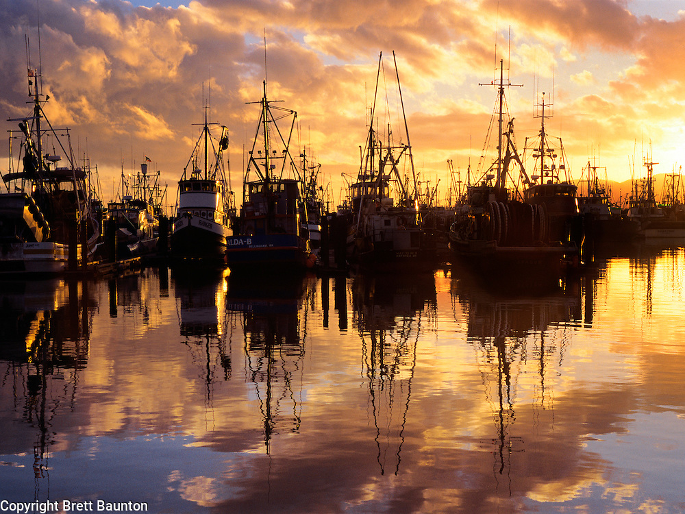 Bellingham Fishing Fleet in Harbor, Sunset Reflection, Washington State, Orange, Color